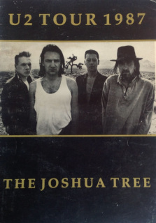the-joshua-tree-tour